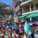 Bloco Alegria do Guarabu 2013 (11)