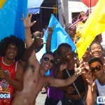 Bloco Alegria do Guarabu 2013 (19)