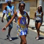 Bloco Alegria do Guarabu 2013 (21)