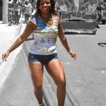 Bloco Alegria do Guarabu 2013 (22)