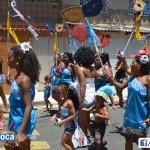 Bloco Alegria do Guarabu 2013 (24)