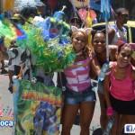 Bloco Alegria do Guarabu 2013 (33)
