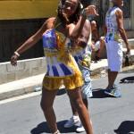 Bloco Alegria do Guarabu 2013 (36)