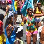 Bloco Alegria do Guarabu 2013 (43)