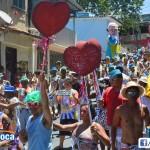 Bloco Alegria do Guarabu 2013 (7)