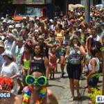 Bloco Nova Geração do Zumbi 2013 (15)