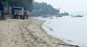 Inea continua a investigar as causas da mortandade de peixes na Baia de Guanabara