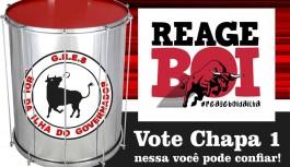 """Integrantes do """"Reage Boi"""" lançam chapa neste domingo"""
