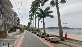 Palmeiras imperiais com risco de queda serão removidas no Jardim Guanabara