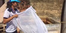 Ilha do Governador recebe primeiro Mutirão Contra o Aedes Aegypti de 2016