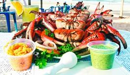 Festival Caranguejeiro no restaurante Estação Ver-o-Peso neste final de semana